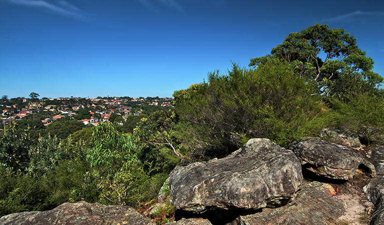 Rocky lookout over the park to the suburbs, Wolli Creek Regional Park. Photo: John Spencer