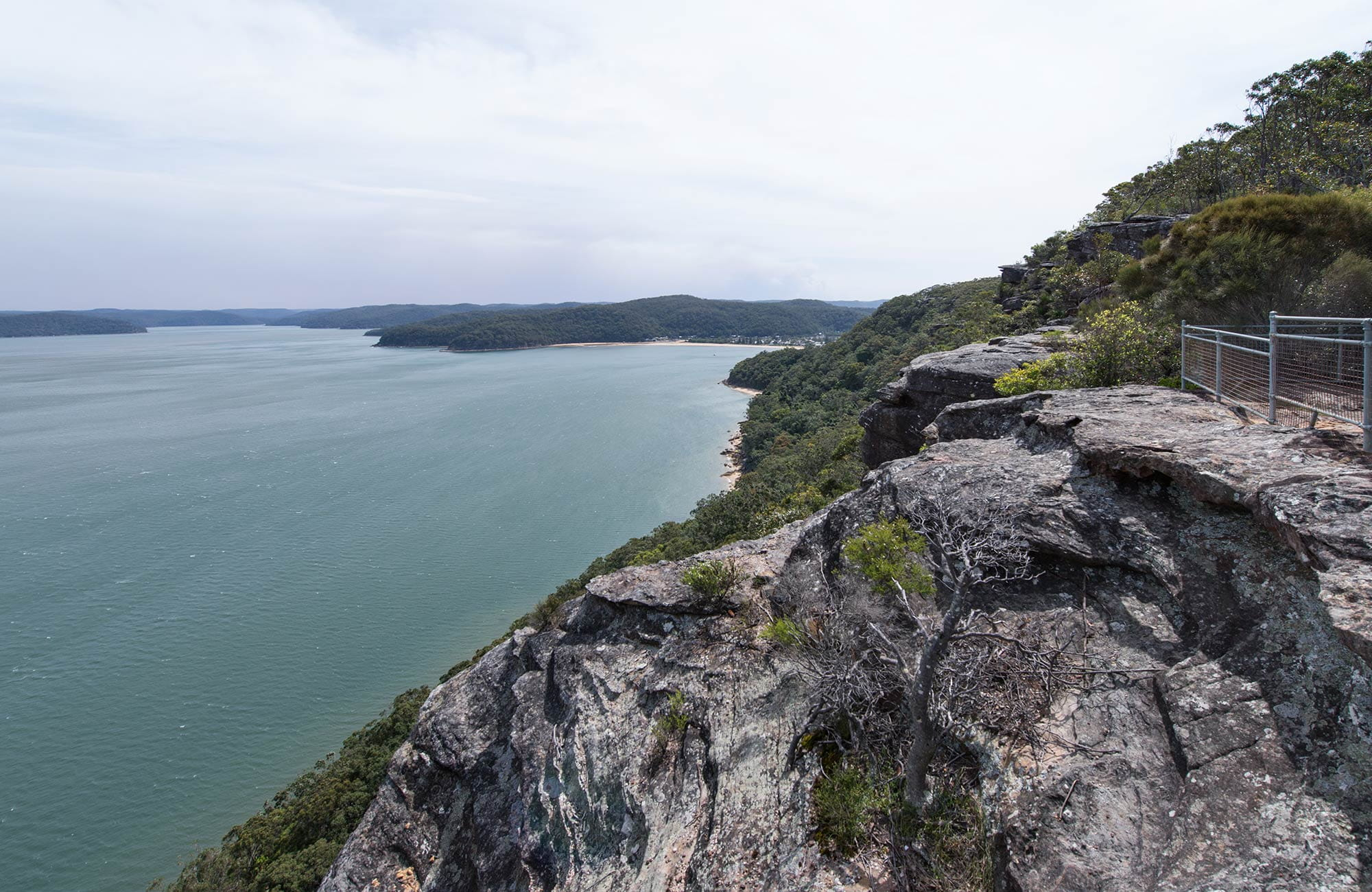 Wondabyne to Patonga walk, Brisbane Water National Park. Photo: John Spencer