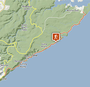 The Coast track | Visitor info | NSW National Parks