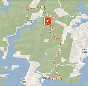 Wondabyne to Patonga walking track