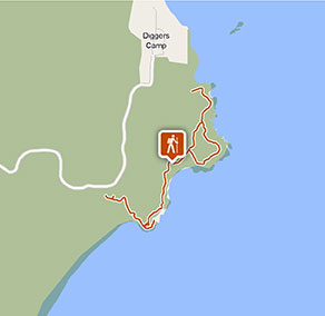 Wilsons Headland walking track