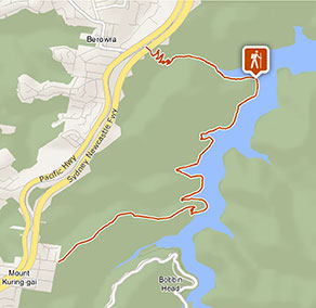 Mount Ku-ring-gai track to Berowra Station