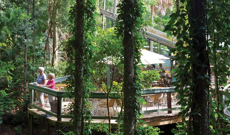 People enjoying the Rainforest Centre in Sea Acres National Park. Photo: Rob Cleary