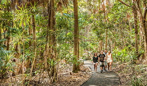 Family walking along Palm Valley in Cape Byron State Conservation Area. Photo: M Vanderveer/OEH