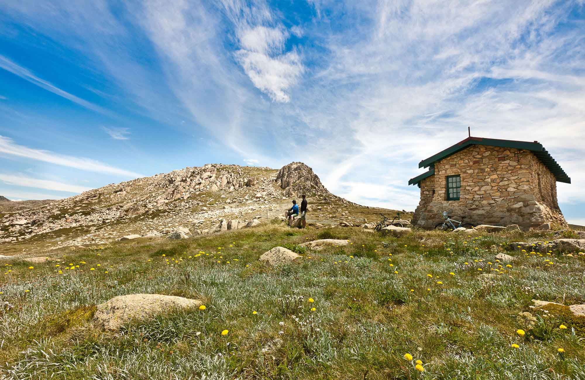 Seamans Hut with grass and wildflowers. Photo: Murray Vanderveer