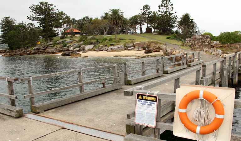 Boardwalk on Shark Island, Sydney Harbour National Park. Photo: John Yurasek