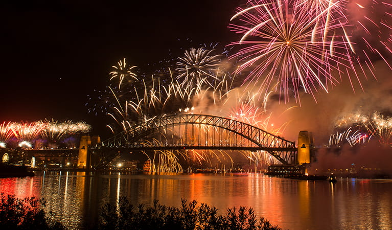 Photo of the height of the fireworks display, Goat Island, Sydney Harbour National Park. Photo: Jennifer Mitchell