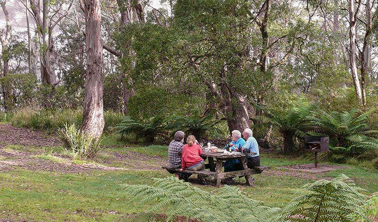 Banksia Point picnic area, New England National Park. Photo: H Clark