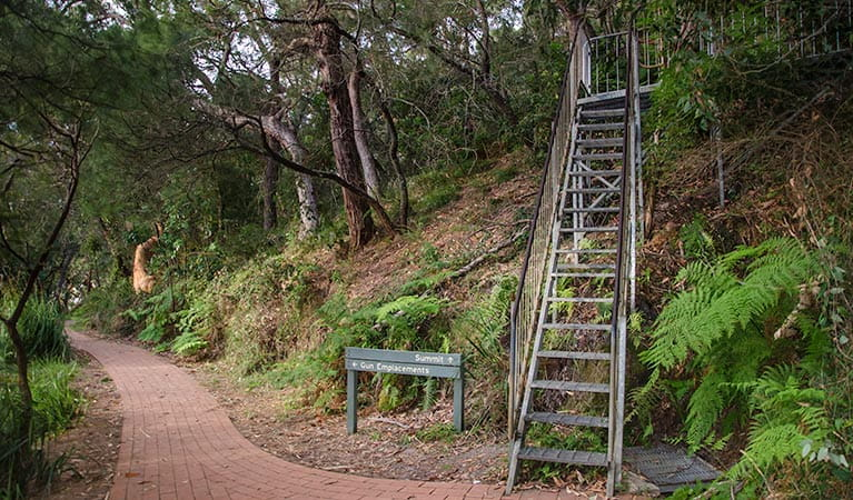 Tomaree Head summit walk. Photo:John Spencer/OEH