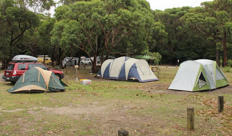 Tent Camping In Long Beach Ca