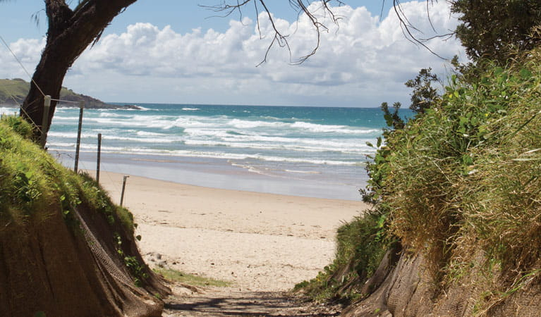 Sand and ocean of Mullaway Beach. Photo: Rob Cleary