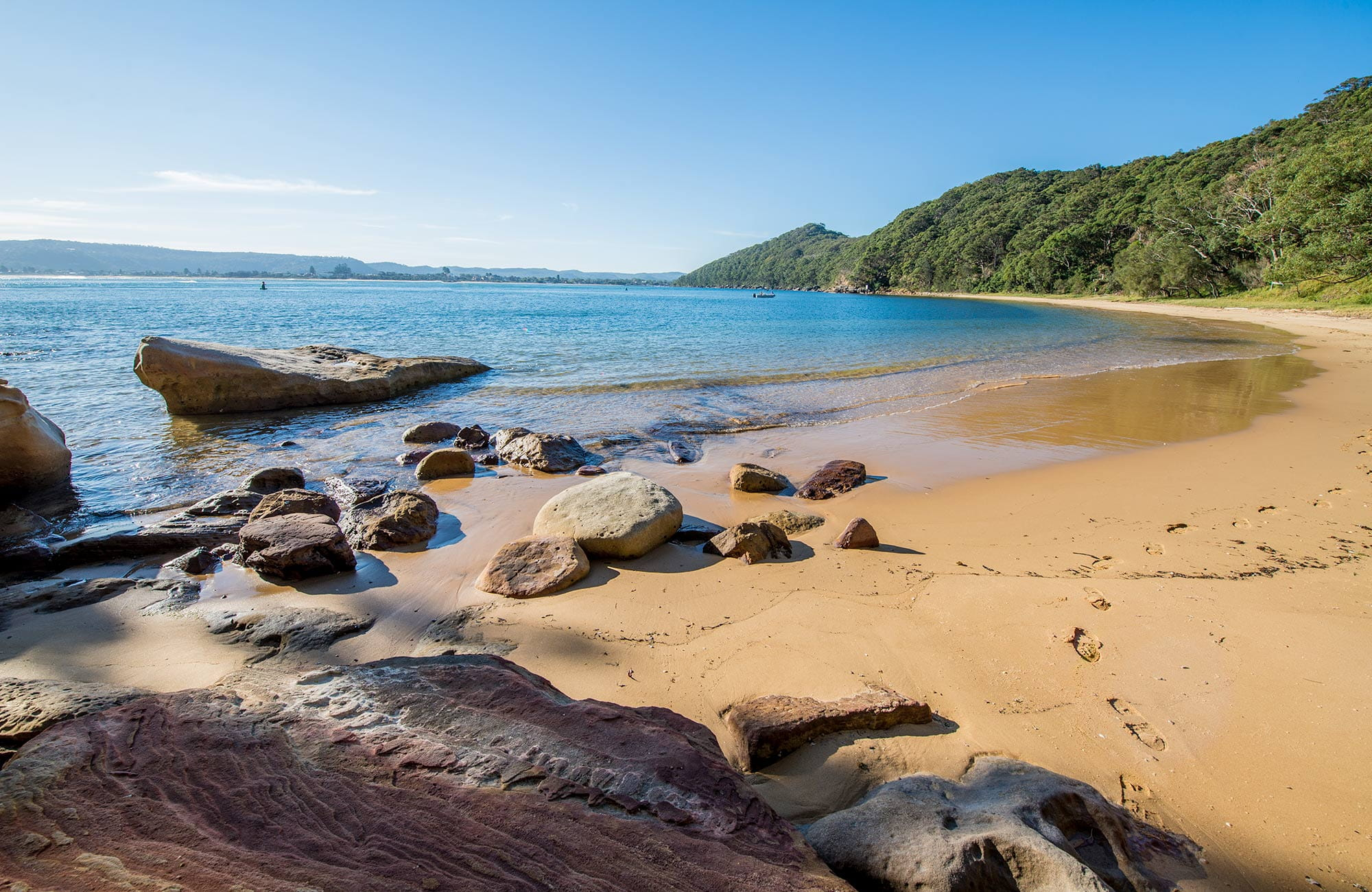 Image result for bouddi national park