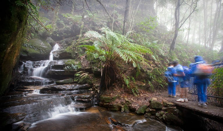 WilderQuest WildThings school excursion, Blue Mountains National Park. Photo: Nick Cubbin/OEH