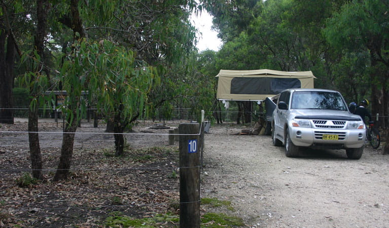 4WD in Bittangabee campground. Photo: David Costello