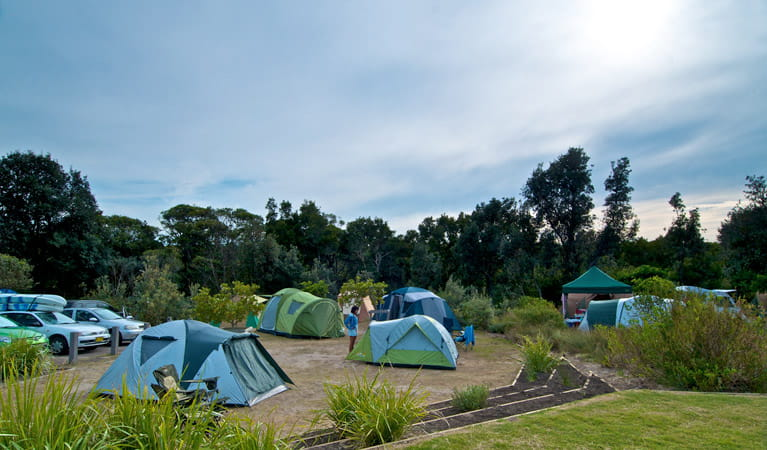 Tents in Freemans campground, Munmorah State Conservation Area. Photo: John Spencer