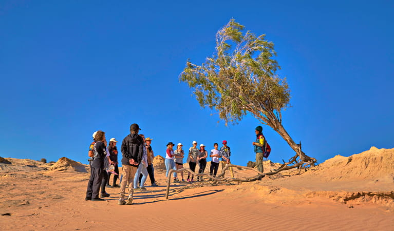 Walk the Walls of China school excursion in Mungo National Park. Photo: Tanja Bruckner