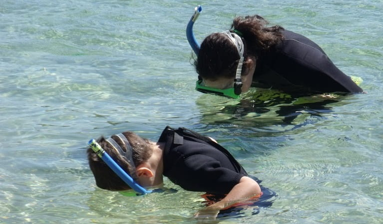 Snorkelling Discovery tour at Merimbula, near Bournda National Park. Photo: Robyn Kesby/OEH