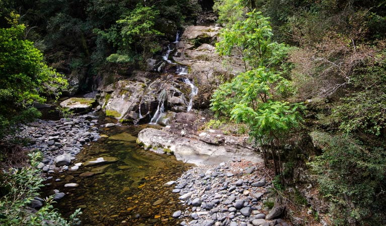 Rocky Crossing, Barrington Tops National Park. Photo: John Spencer/NSW Government