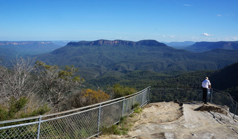 Prince Herny Cliff - Olympian Rock, Fern Bower Circuit, Blue Mountains National Park. Photo: Steve Alton/NSW Government