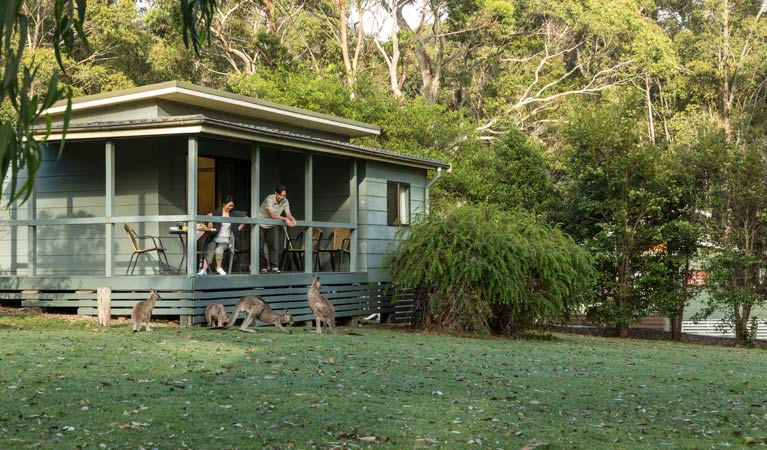 Depot Beach cabins, Murramarang National Park. Photo: David Finnegan