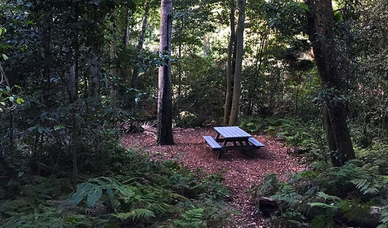 Picnic table beside Bola Creek on Forest path walking track. Photo: Natasha Webb/OEH