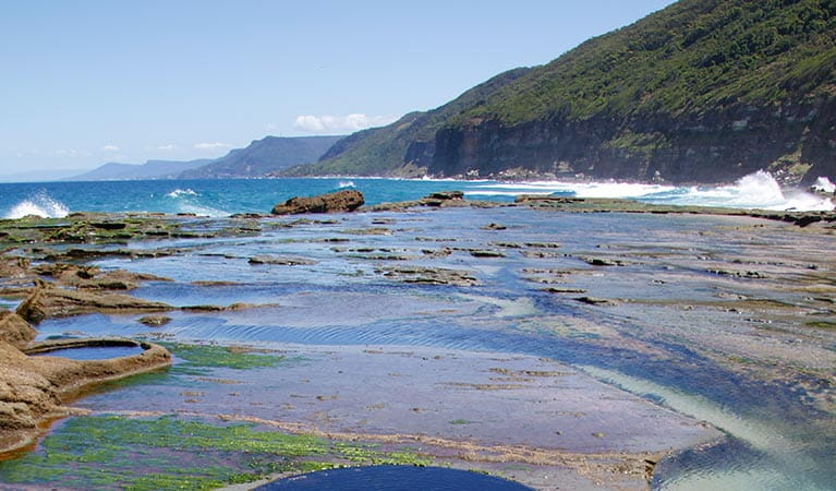 Views of coastal headland facing south from Figure Eight Pools in Royal National Park. Photo: David Croft/OEH