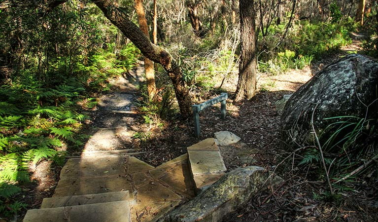 Stairs winding along the Bullimah track. Photo:John Yurasek