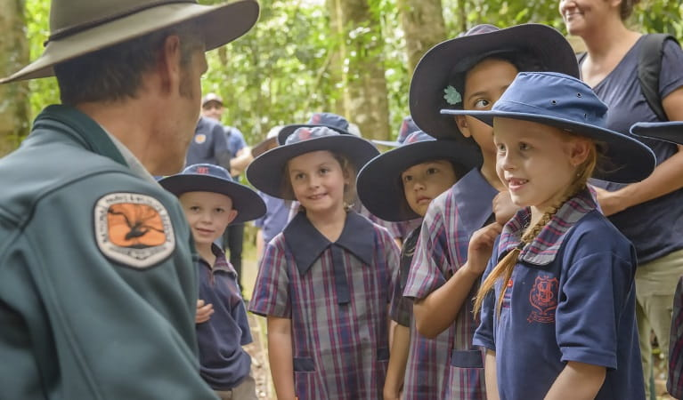 School children being guided in nature exploration on a WilderQuest excursion at Dorrigo National Park Photo: John Spencer/OEH