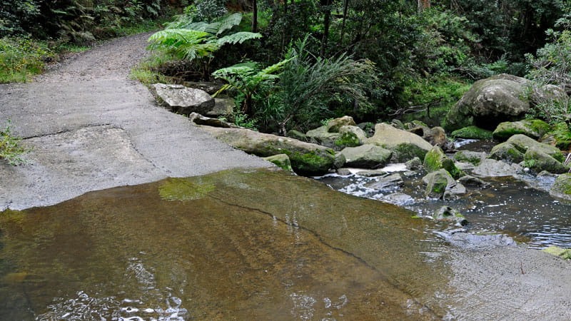 River Crossing, Lane Cove National Park. Photo: Kevin McGrath