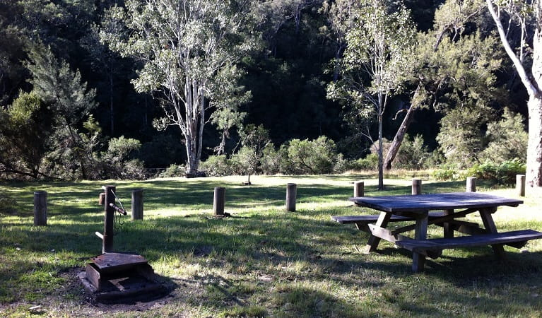 Picnic table in Doon Goonge campground, Chaelundi National Park. Photo: Andrew Pitzen/OEH