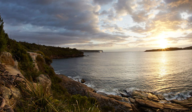 Scenic views from Middle Head lookout, Sydney Harbour National Park. Photo: David Finnegan