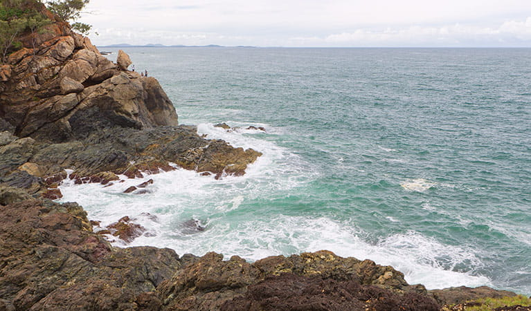 Rocky coastine in Sea Acres National Park. Photo: Rob Cleary