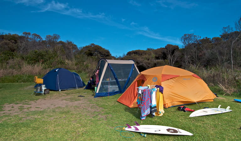 Tents and surboards in Frazer campground. Photo: John Spencer