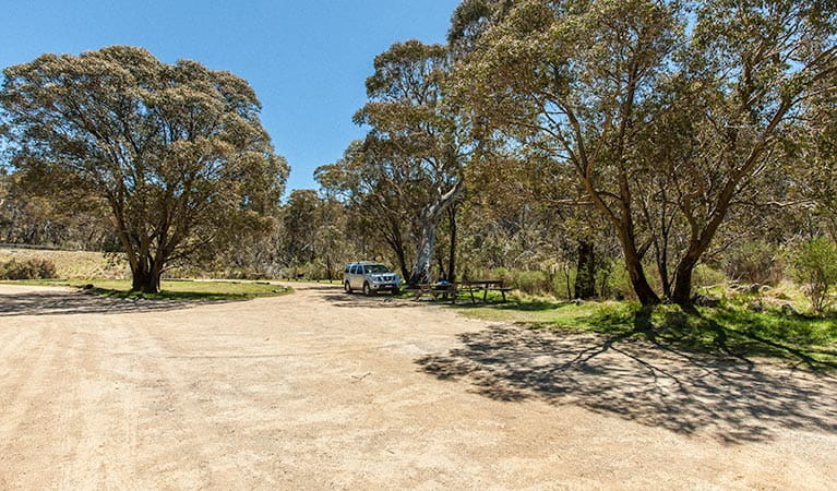 Sawpit Creek picnic area, Kosciuszko National Park. Photo: Murray Vanderveer