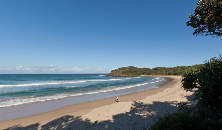 Diggers Beach, Coffs Coast Regional Park. Photo: Rob Cleary