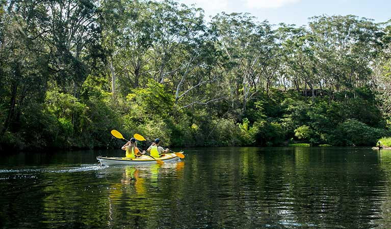 People kayaking on Lane Cove River, Lane Cove National Park. Photo: OEH/Caravel Content