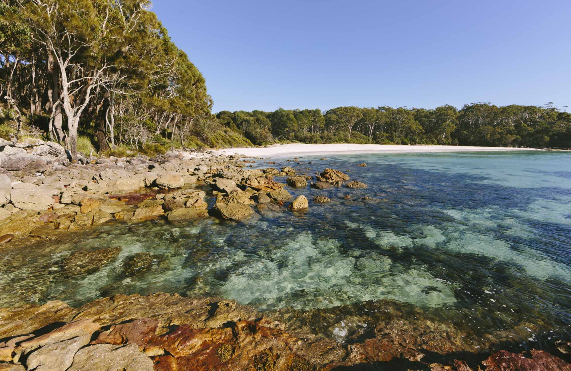 Greenfield Beach, Jervis Bay National Park. Photo: David Finnegan/NSW Government