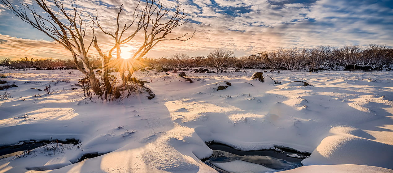Sunrise over a snow covered field, Kosciuszko National Park. Photo: John Spencer
