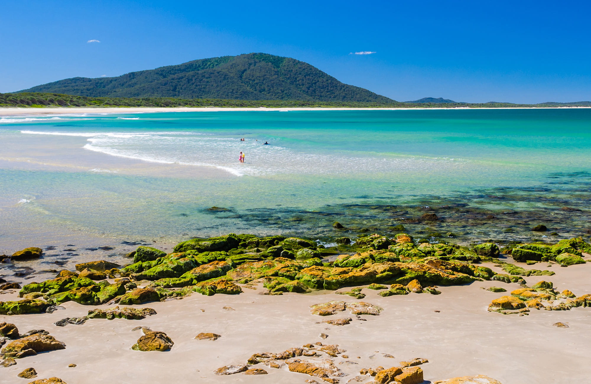 Book Your North Coast Accommodation Online Nsw National