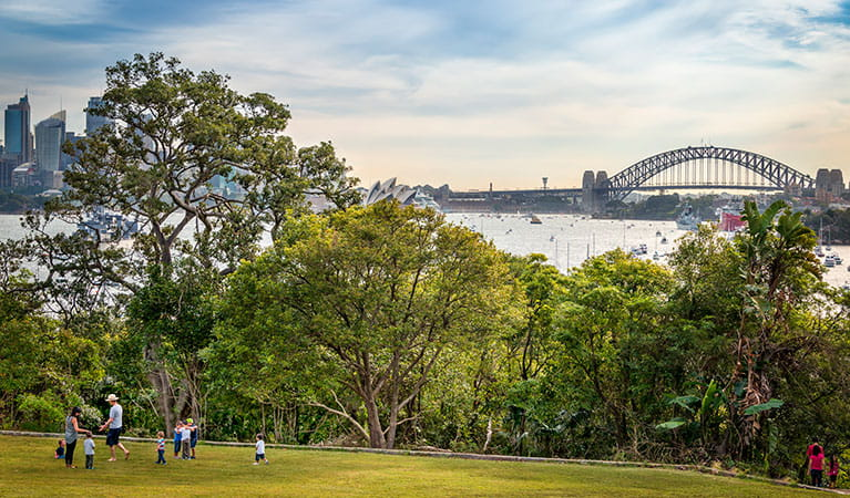 Photo of Athol Lawn, Bradleys Head, Sydney Harbour National Park. Photo: John Spencer/OEH