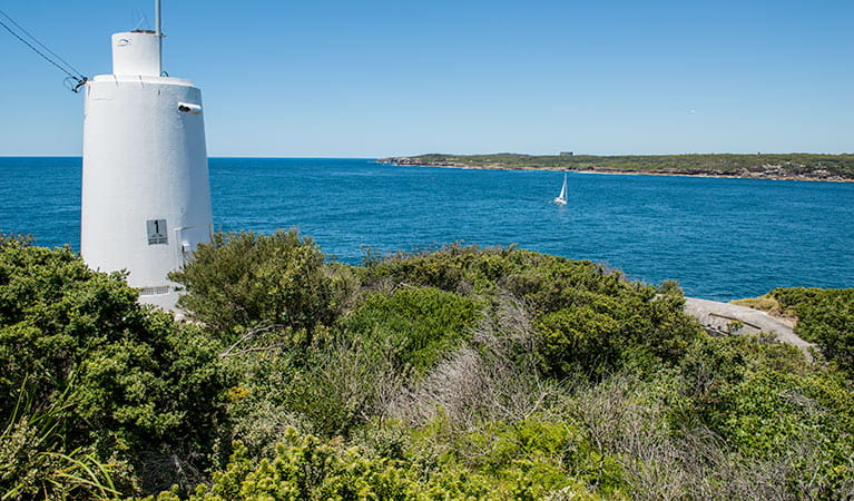 Henry Head walking track, Kamay Botany Bay National Park. Photo: John Spencer/OEH