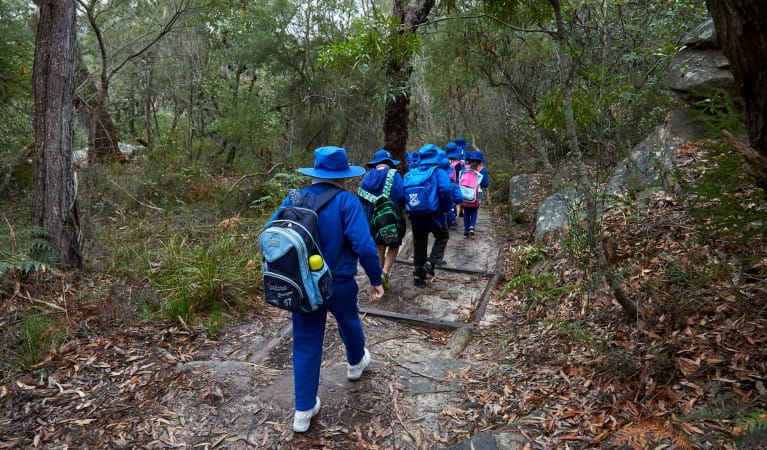 Students walking along Honeymoon track on a Royal National Park school excursion. Photo: Tanja Bruckner