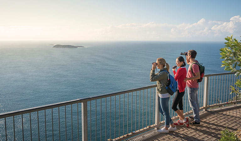 Lookout at top of Tomaree Head, Tomaree National Park. Photo: J Spencer/OEH