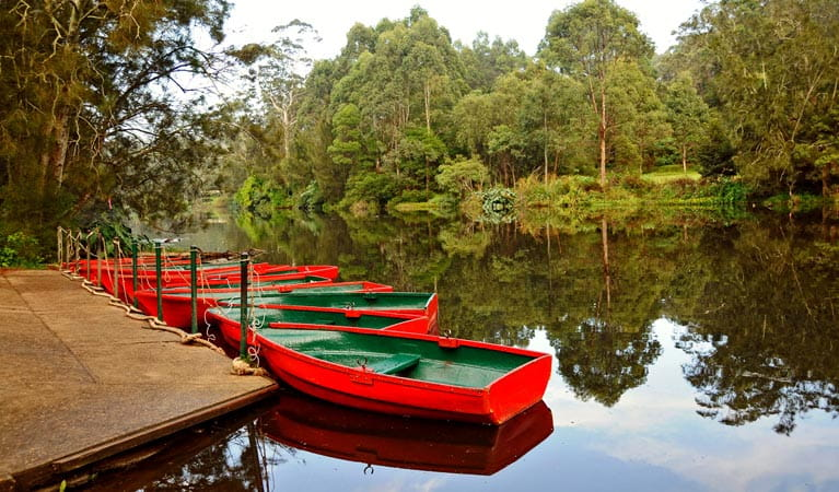 Red row boats moored at the boatshed, Lane Cove National Park. Photo: Kevin McGrath